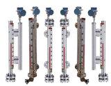 ماء زيت سائل بنزين [دسول] [لفل ينديكتور] [سغت غلسّ] مقياس مغنطيسيّة مستوية