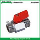 磨くクロム染料で染められたItalycopperは作った真鍮の小型球弁(AV1046)を