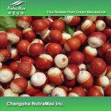 100% натуральные Euryale экстракт 5: 1, 10: 1 Tlc