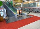 スリップ防止Entrance MatsかTufted Carpet//PVC Backing/Floor Mats/Door Mats