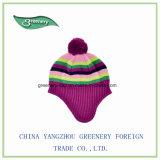 2017人の新しいデザイン子供のEarflapの暖かい多色刷りの帽子