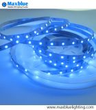 Tira azul del color 3528SMD Nonwaterproof LED