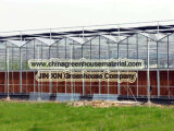Производство цена за Венло Тип стекла парниковых
