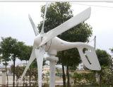 10kw Éolienne horizontale avec le contrôleur de la grille et le convertisseur