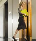 Srh 전송자 엘리베이터는 유쾌한 드라이브를 제공한다