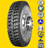 Radial cinese Truck e Bus Tyre TBR Tyre su Promotion