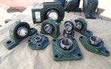Pillow Block with Insert Bearing Units Ucf308