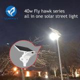 40W LED de luz solar de la Calle Jardín Lámpara Solar con la certificación CE