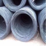 bobina del filo di acciaio a basso tenore di carbonio di 8mm/filo di acciaio laminati a caldo Rod