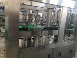 L'animal familier peut bouillonner contiennent la chaîne de production de boisson (TG18-4)