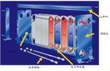 Теплообменный аппарат подогревателя Wort охладителя продукции пива охладителя бака пива