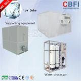 Grande capacidade cúbica de máquina de gelo para a Indonésia