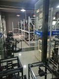 Imprimante 3D de bureau de gicleur de machine rapide de grande précision duelle de prototypage