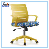 Cadeira média da mobília de escritório traseiro (KBF 813B)