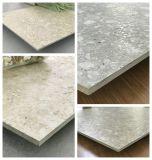 Los materiales de construcción de terrazo italiano de baldosas de cerámica para el proyecto de porcelana esmaltada Baldosa (TER601)