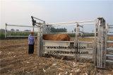 販売のためのCattlleの電流を通された導板/送り装置/牛クラッシュ/牛畜舎のパネル
