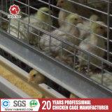 Galvanisé à chaud de la cage de poulet