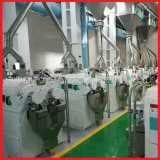 300t/d современной автоматической рисовые мельницы машины