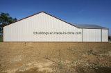 Структура полуфабрикат здания стальная для мастерской/пакгауза