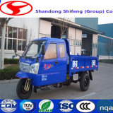 500kg -3tons Three Wheeler Shaft Transmission를 위한 Fory No. 1 Multi Cylinder Tricar Transportation 또는 Load/Carry