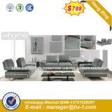 Salle de séjour classique tissu canapé en bois Meubles (HX-8N2199)