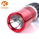 Bolsillo de la luz de LED linterna llavero linterna LED de batería seca