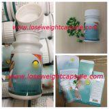 Liproの減量のための草の食餌療法の細くのカプセルの食事療法の丸薬