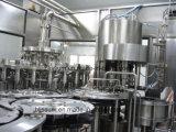 Pequeña planta de embotellamiento del zumo de fruta RFC-h 14-12-5 para la botella del animal doméstico