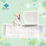 Haustier-Training und Welpen-Auflagen für Samill Tiere