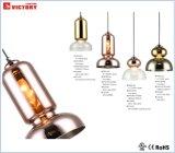 Simples e moderno estilo novo lustre única iluminação pendente com marcação CE