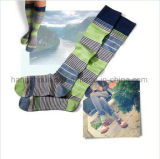 Strickende Gefäß-Socke in der Streifen-Form-Art-Kind-Socke