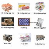 [ببر بولب] بيضة صينيّة [برودوكأيشن لين] لب [مولدينغ مشن] بيضة صينيّة عرض صينيّة آلة