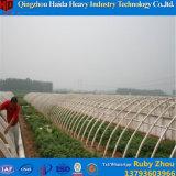 토마토를 위해 Hydroponic 중국 공장 필름 녹색 집
