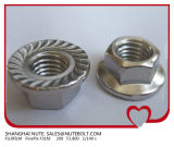 Acier inoxydable 304 316 Hexagon&#160 ; Nut&#160 ; with&#160 ; Norme ANSI de la bride DIN6923 5/16-18