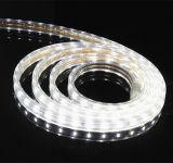 庭の装飾のための極度の明るく暖かい白SMD5630 LEDのストリップ