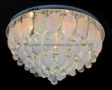 زجاجيّة سقف مصباح في تصميم أنيق
