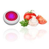 Lo spettro completo LED del UFO 135W si sviluppa chiaro per le piante Veg e fiorisce