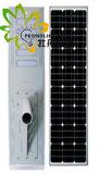 공장 가격! ! 100W는 1개의 태양 LED 가로등에서 모두를 통합했다! ! 인체 적외선 감응작용! ! 옥외 정원 또는 벽 또는 안마당 또는 거리 또는 공도 또는 잔디밭 램프