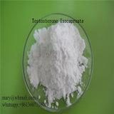 Esteróide de Isocaproate Abolic da testosterona da pureza elevada da fonte para o Bodybuilding do músculo