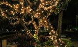 خارجيّة زخرفة ضوء في حديقة
