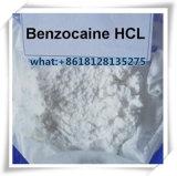 HCl 23239-88-5 хлоргидрата Benzocaine противоаритмического снадобья для сброса боли