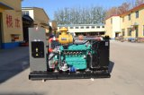 Generador Diesel 75kVA con Ricard /Cummins/Perkins/Motor Deutz