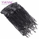 Clip di capelli umana brasiliana del Virgin di Yvonne in riccio crespo di estensione dei capelli