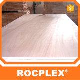 Rocplex PVC 합판, 구체적인 Formwork, 셔터를 닫는 위원회 1220mm*2440mm*3mm를 위한 물자--21mm