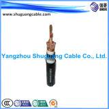 Огнеупорные Cu ленты показаны ПВХ изоляцией и оболочку кабеля компьютера