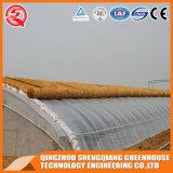China galvanisierte Stahlgefäß-Film Tunnell einzelnes Überspannungs-Gewächshaus