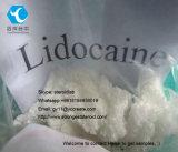 Lidocaine van de Verdovingsmiddelen van de Zuiverheid van 99% Lokale Basis/Xylocaine Pijn Reliver