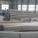 Ijzer van Staal van de Staaf van Bouwmaterialen het Vlakke die in de Fabriek van China wordt gemaakt
