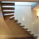 Escaleras flotantes del solo larguero con pasos de progresión de madera