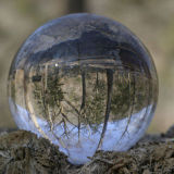 Het onberispelijke Gebied van de Halfedelstenen van het Gebied van het Kristal van de Bal van het Kwarts Rutilated voor Verkoop, het In het groot Kristal van het Gebied van het Kristal van het Kwarts